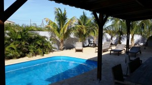Oasis Guesthouse Bonaire: Poolbereich