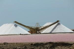 Salt Pans Bonaire