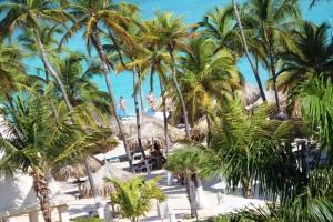 Stardn und Palmen am RIU Palace Aruba